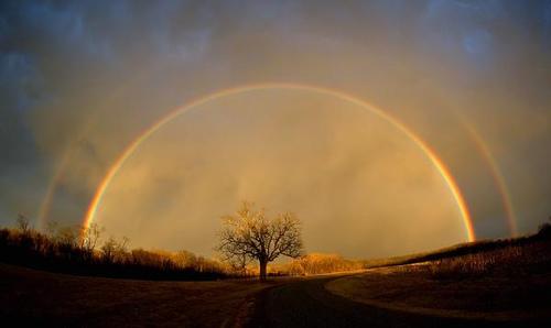Rainbow rd